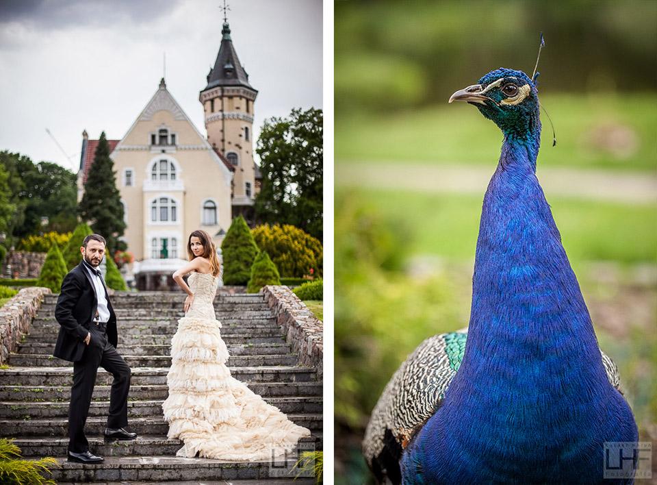 Pałac bursztynowy w Strzekęcinie sesja ślubna