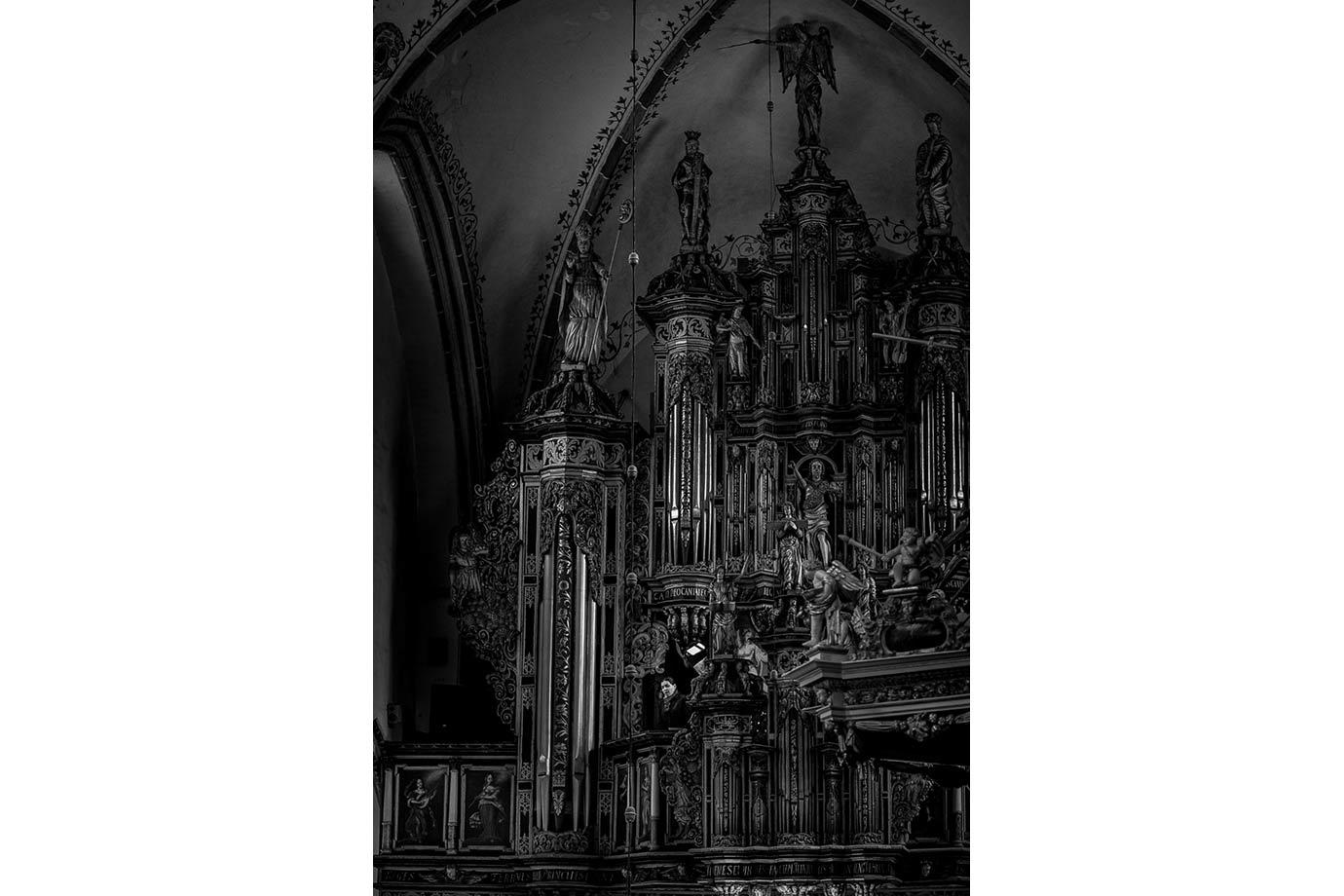 fotografia ślubna w katedrze w kamieniu pomorskim