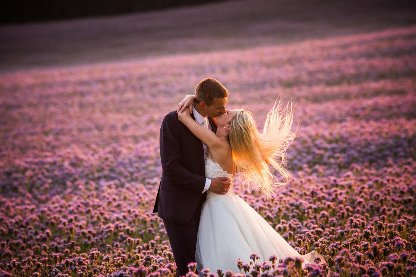 sesja ślubna na łące pełnej kwiatów