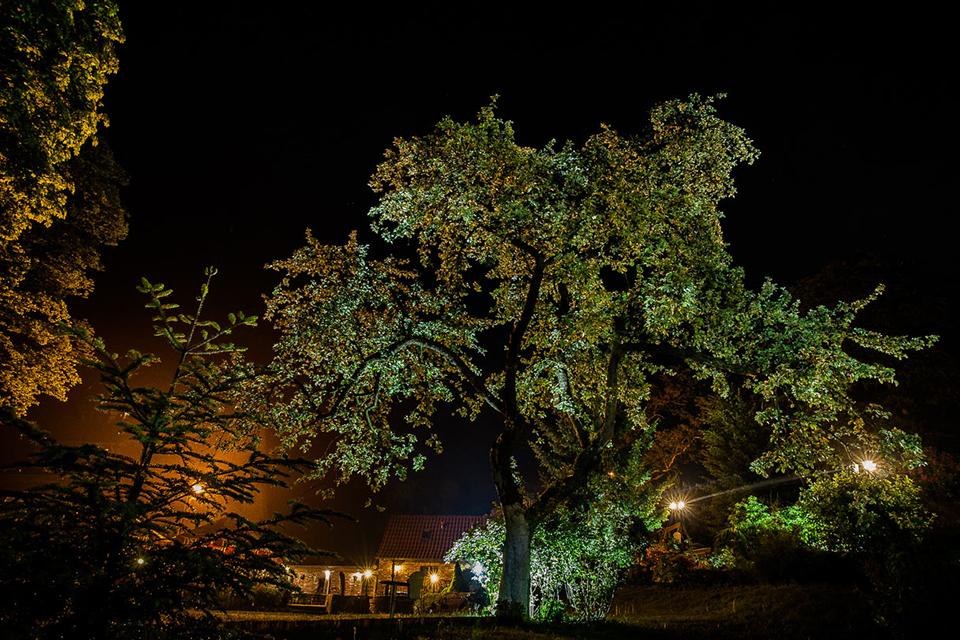 młyn nad stara regą w nocy