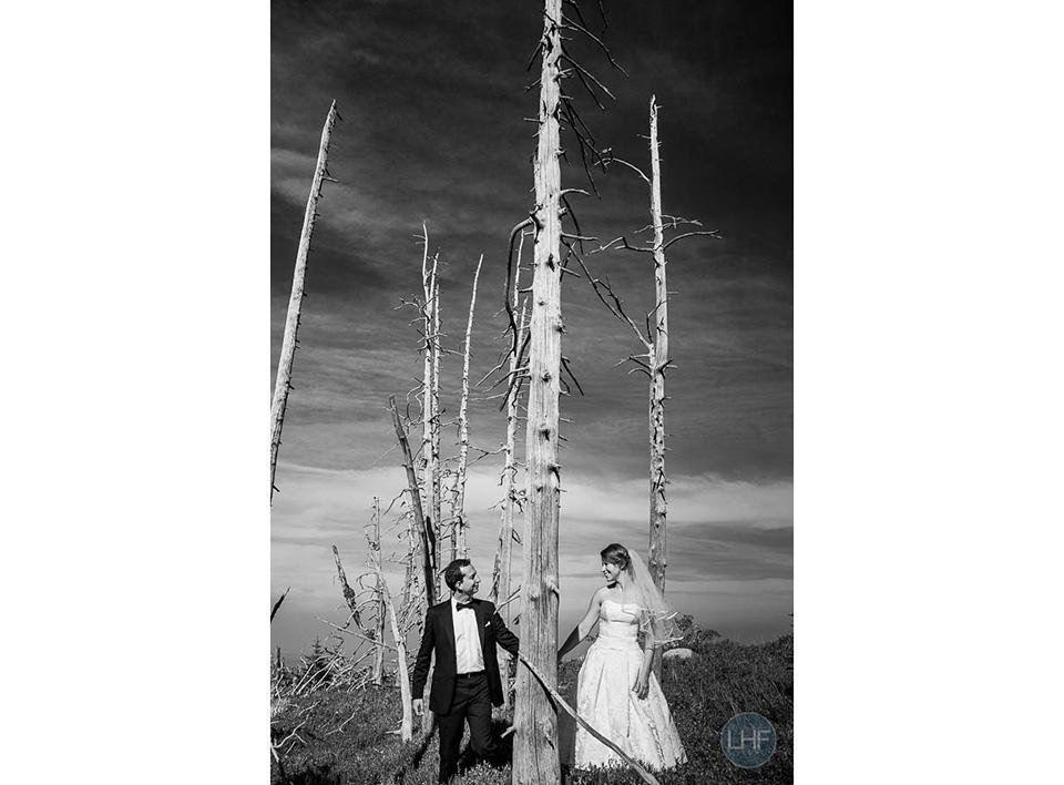 sesja ślubna w karkonoszach