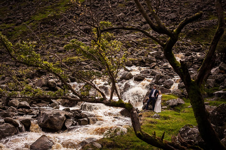 fotografia ślubna w wicklow park
