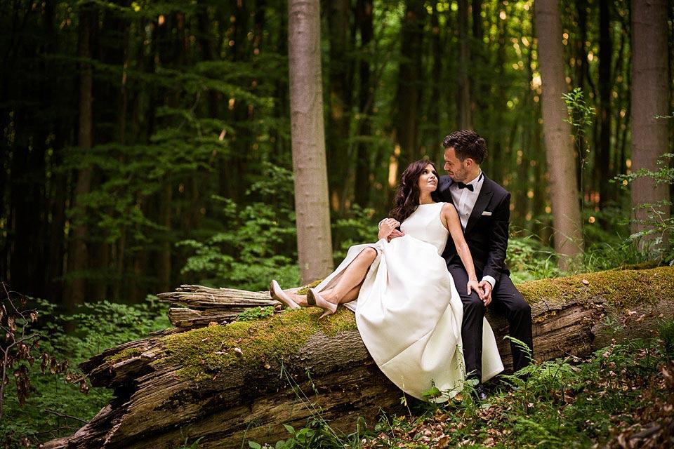 sesja ślubna w puszczy bukowej