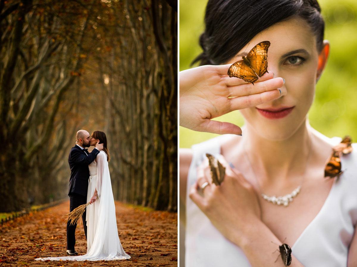 motyle na ślub